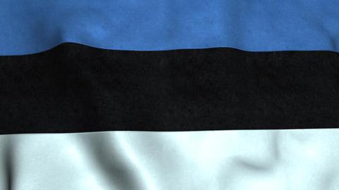 Estonia Flag Animation