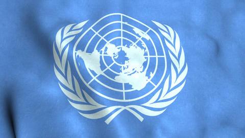 United Nations Flag Animation