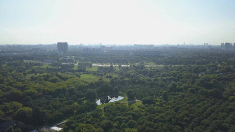 Aerial view of park, lake and urban buildings on horizon at sunny day Footage
