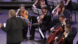 Musicians violinists play violins in the orchestra Footage