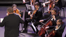 conductor conducts musicians of the orchestra who play music on violins Footage