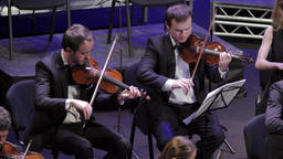 Orchestra musicians play violin music Footage