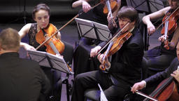 Musicians play violins in the orchestra Footage