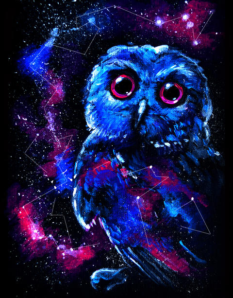 Space galaxy owl フォト