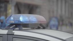 The police flasher. Police patrol car ビデオ