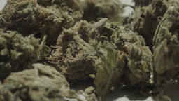 Marijuana. Drug. A close-up of dry marijuana. Cannabis Footage