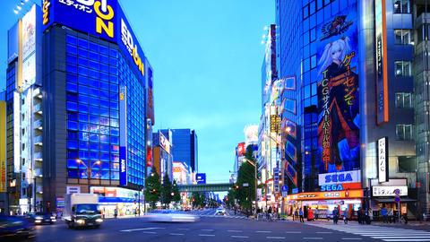 Time-lapse shot of Akihabara shopping area in Tokyo ビデオ
