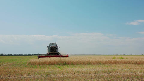 Harvester Collects Wheat 画像