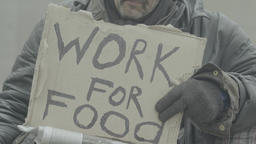 "A poster with the inscription ""Work for food"" in the hands of a homeless beggar Live Action"