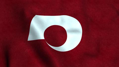Flag Of Kumamoto Animation