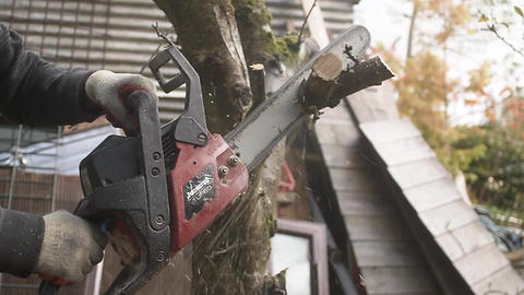 Chainsaw Live Action