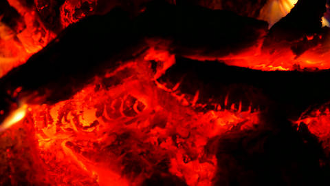 Dark live coals. Burning hardwood in detail. Burning woods shiver in hot air and Footage