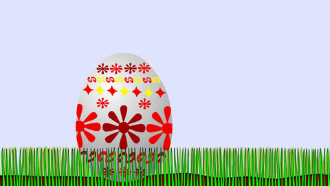 Easter chicken - disagreeable surprise, Stock Animation