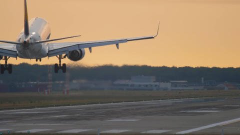Airplane landing at the early morning Live Action