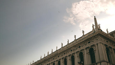 Slow motion flying birds at Saint Mark's Square. Venice, Italy.3 Footage