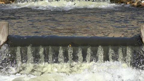 River brook waterfall water stairs flow. 4K Footage