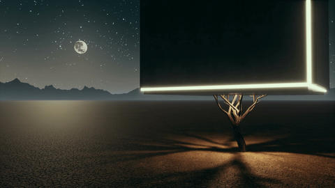 Unreal lonely cube tree in fantastic desert at night Stock Video Footage