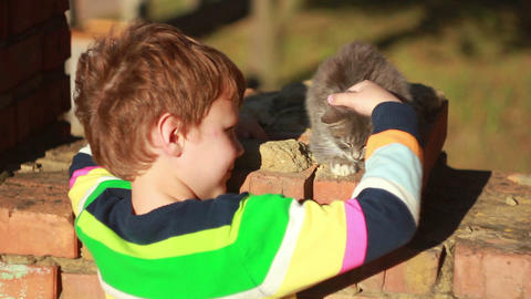 Boy playing with a cat 3 Stock Video Footage