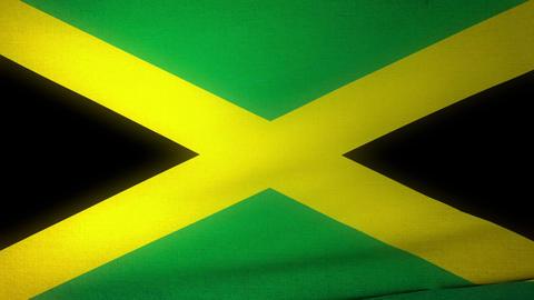 Flag Jamaica 04 Stock Video Footage