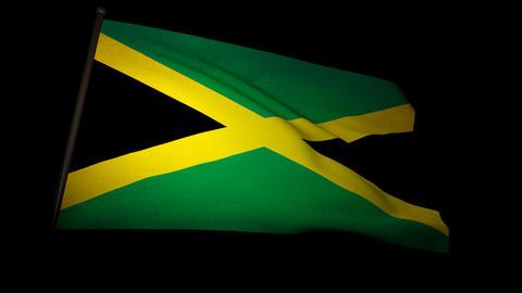 Flag Jamaica 01 Stock Video Footage