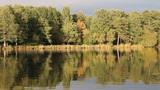 Autumn Lake Footage