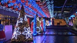 Christmas Lights In Japan stock footage