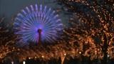 Christmas lights in Japan Footage