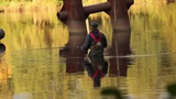 fisherman in golden water Footage