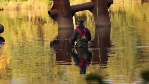 fisherman in golden water Stock Video Footage
