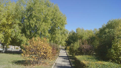 Autumn Park 03 (pan right) Stock Video Footage