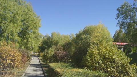 Autumn Park 03 (pan right) Stock Video Footage