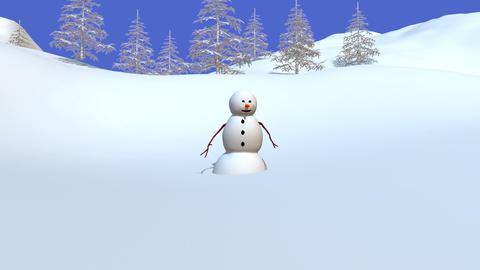 雪ダルマ Stock Video Footage