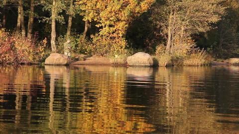 fishing the autumn lake Stock Video Footage