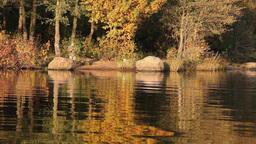 fishing the autumn lake Stock Video Footage