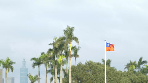 Taiwan flag on windy day, with Taipei 101 in background 4K Live影片