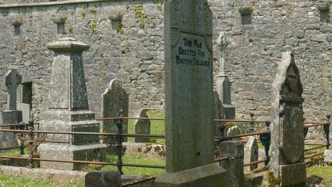 Kilcrea Friary, County Cork, Ireland - Graded Version Archivo