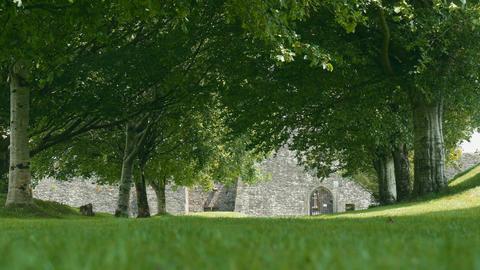Kilcrea Friary, County Cork, Ireland - Graded Version 画像