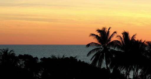 [alt video] Beautiful tropical orange sunset with sea and palm trees