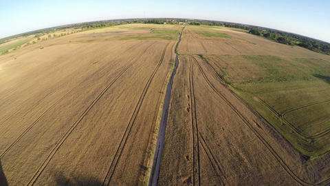 Aerial view over ripe summer end crop field in sunny evening Footage