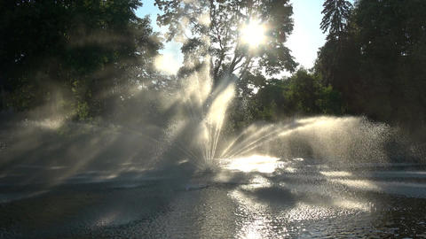 Beautiful decorative summer fountain on river water Footage