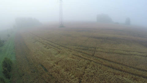 Dark early morning mist fog in farmland with wheat fields, aerial view Footage