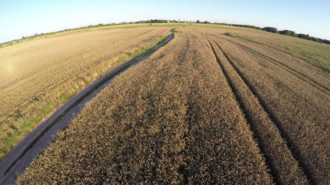 Rural summer end landscape with bad gravel road, aerial view Stock Video Footage