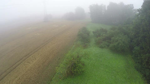 Aerial view in misty morning over farmland landscape with field and trees Footage