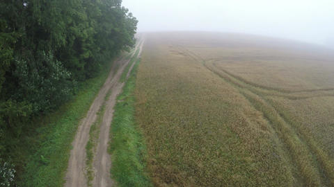 In misty morning landing drone on rural road near forest Footage