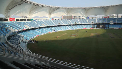 Cricket Play Stadium Live Action