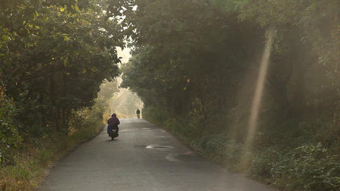Rural area Tar Road in India Live Action