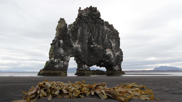 Iceland Dinosaur Rock stock footage