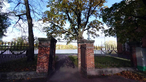 Autumn forest. Lake. Autumn Landscape. 4K Footage