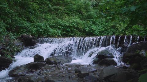 water landscape in summer season Footage
