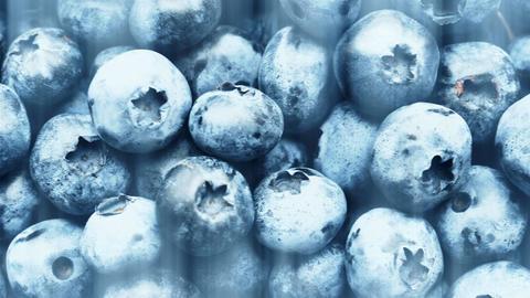 Closeup panning shot of fresh bilberry or blueberries, 4k Footage